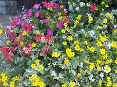 P8183417ac Ploumilliau Church Flowers