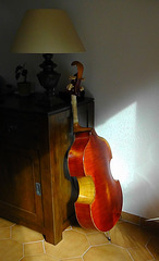 Cello violoncelle
