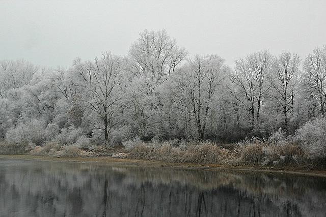 Überfrorene Natur