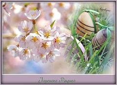 Bonnes Fêtes De Pâques à Tous !