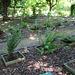 Jardin botanique de La Charme -63 (22)
