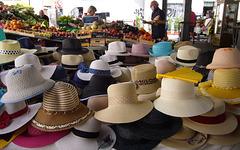 Sant'Ambrogio's market - (PIPs)