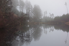A smirry night in the Trossachs