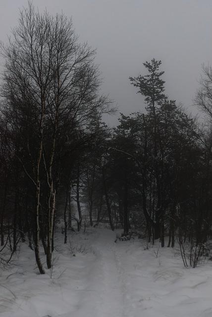 Abend - 20150101