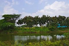 Kumbakonam to Chennai
