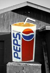 DIY Pepsi