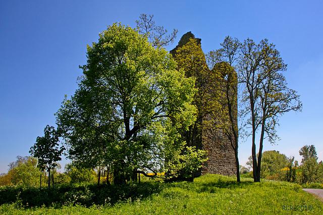 Kirchenruine Nordhusen