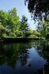 Essonne, mon beau miroir