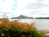 At Tairua  On The Coromandel.