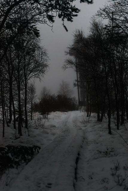 Holzweg im Dunkeln -  20150101