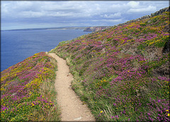 Newdown's Head, Cornwall
