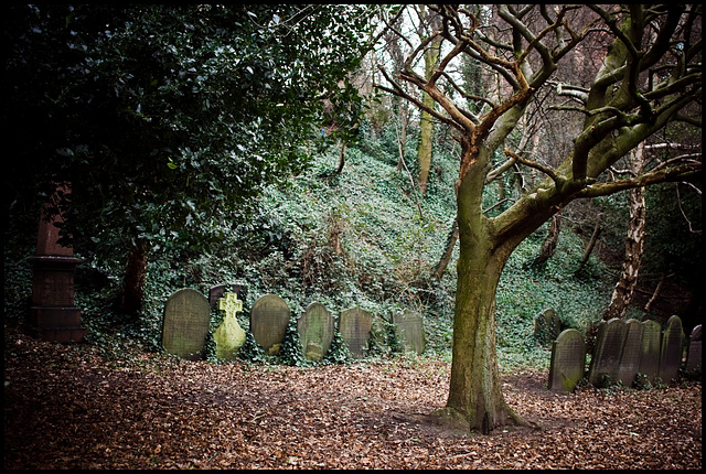 Cathedral graveyard