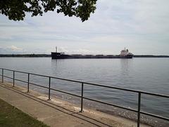 Le Tim S. Dool rentrant au port