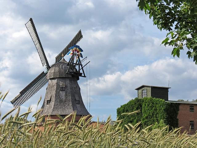 Historische Holländer-Windmühle in Malchow