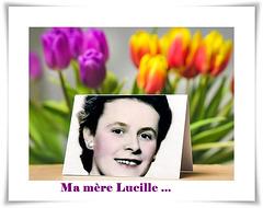 En souvenir de ma mère qui aimait tellement les fleurs...