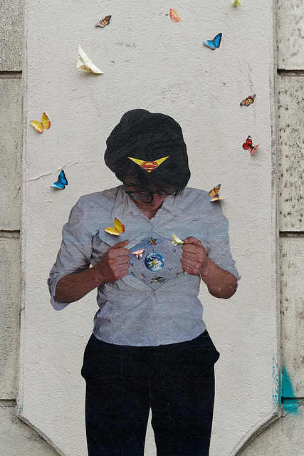 Laissez les papillons s'envoler