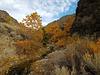 McGill Creek & Canyon