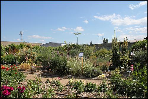 Jardin botanique de La Charme -63 (24)