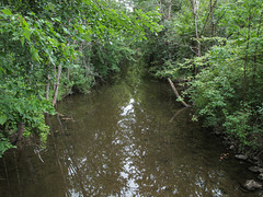 You asked to see the Coldwater River in Barry County, Michigan, and here it is.