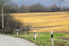 Landstraße bei Lütjenburg