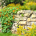 Mauer mit Blüten - muro kun floroj