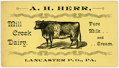 A. H. Herr, Mill Creek Dairy, Lancaster, Pa.