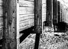 Timber Footbridge
