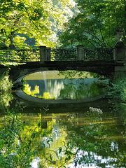 Bridging the Green