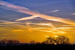Sunrise under Contrails