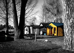 Yellow cabin