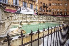 Gaia Fountain, PIazza del Campo, Siena