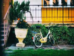 Il paradiso in terra non esiste, ma chi va in bicicletta ci arriverà comunque. (Mauro Parrini)