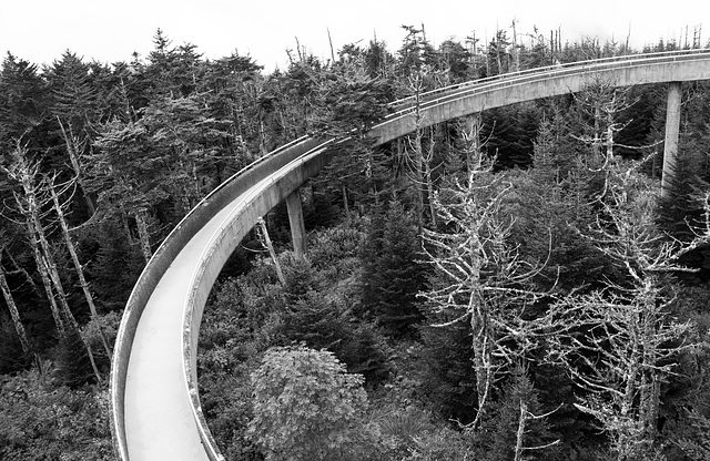 Ramp, Clingmans Dome