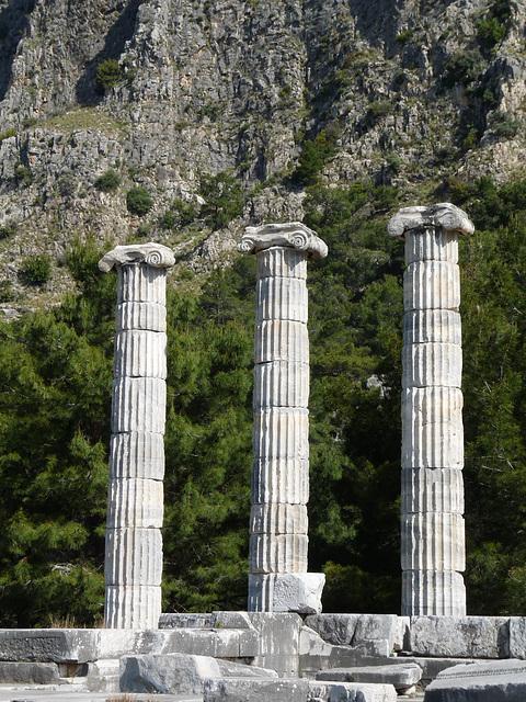 Priene- Temple of Athena Polias