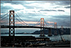 Bay Bridge *