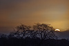 Last Sunrise of the Year