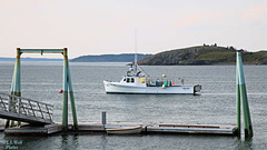 Carrie & Kayla in Lubec Harbor