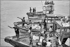 Pêcheurs de Bombay