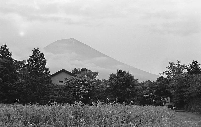 Morning sun and Mt. Fuji
