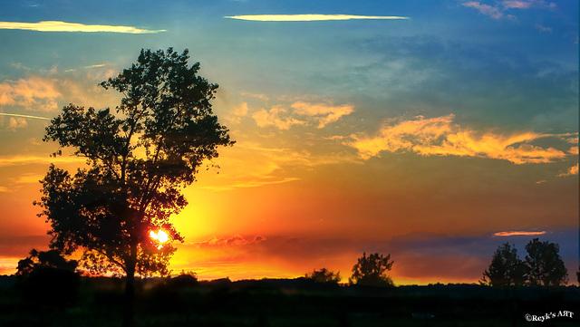 Ein Sommernachtstraum,....