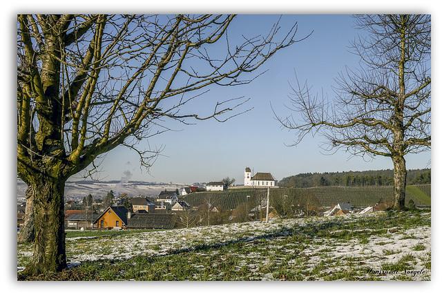 Kirche Wilchingen