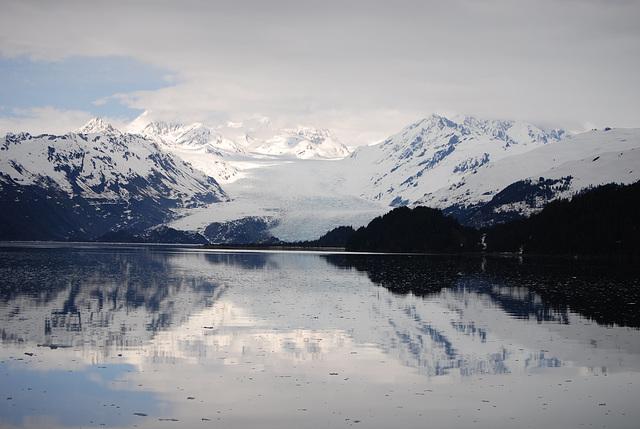 College Fjord