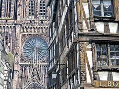 Strasbourg (67) 8 août 2011.