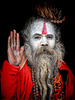 sadhu's greetings