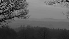 A grey day