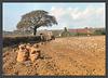 Longbrook Farm