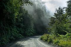 carretera_fog