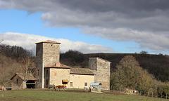 Saint-Quentin-Fallavier (38) 1 mars 2014. La maison forte des Allinges.