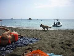 Christiane / Deux cibles sur la plage - Two beach targets