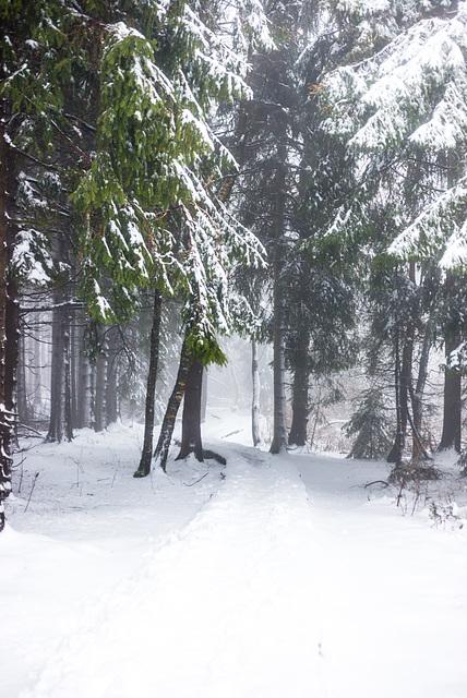 Verschneit - 20150101